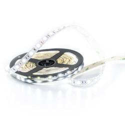 LED traka - hladno bijelo SMD 5050 - 5m
